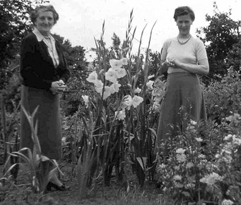 Mrs Moore standing with daughter in law in garden with very tall gladioli